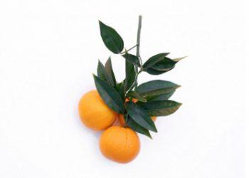 Vitamin C to be radiant