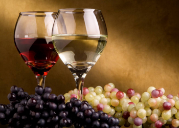 Polyphenols, the great allies against cancer